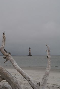 Lighthouse Inlet, Folly Beach, SC
