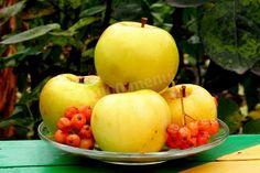 ВКУСНЫЕ СЕКРЕТЫ СЕМЬИ МИЗРАХ: моченные яблочки 🍎🍎🍏🍏🍎🍎🍏🍏 — ВКУСНЫЕ СЕКРЕТЫ СЕМЬИ МИЗРАХ Apple, Fruit, Vegetables, Food, Marmalade, Apple Fruit, Essen, Vegetable Recipes, Meals