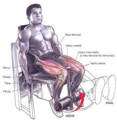 extensão de pernas