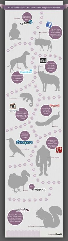 Social media infografia