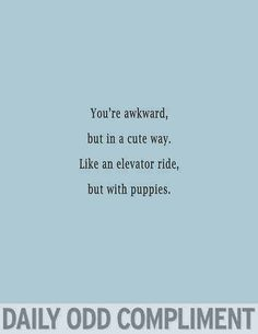 You're an elevator ride but with puppies. •-• Alrighty then... Btw, I think *I'm* the awkward elevator ride with puppies. •-•