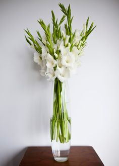 Church arrangement of tall white gladioli in a glass belly vase.
