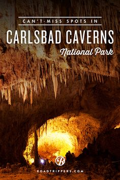 Experience the unique Carlsbad Caverns National Park.
