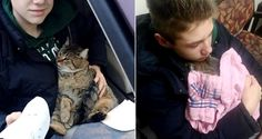 14-year Old Boy Dives into Overpass to Save Cat Hanging Over Bridge - Kitty Clings to Him for Life...