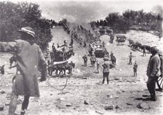 Army Service Corps ox and mule-trains crossing the dry Zand River in the advance on Pretoria  South Africa, January 1900
