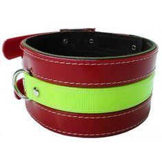 Collares para perros de Rehala - Collares para Perros
