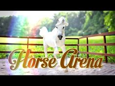 How to Make a Doll Arena | Breyer Horse Arena | Schleich Horse Arena - Doll Crafts - YouTube