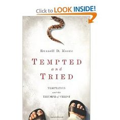 Amazing book on temptation. Poetic and theological.