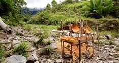 Papua New Guinea - Food and Drink | Goway Travel