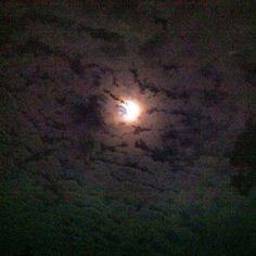 Noche espectacular en El Timbucaso