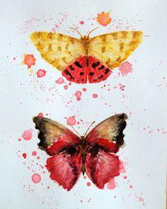 Picturile Roxanei: Picturi in aquarela - Colectii  -  Fluturi