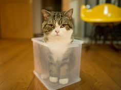 I bought the new storing box to use it in the kitchen. Maru:[I check this before you use.] 12/22, 4-1 via 私信