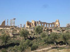 Marruecos 05 Sitio arqueológico de Volubilis  Fundada en el siglo III a.C., la ciudad de Volubilis, capital de la Mauritania Tingitana, fue un importante puesto de avanzada militar del Imperio Romano en el que se erigieron múltiples monumentos de gran belleza. El sitio arqueológico, ubicado en una fértil región agrícola, conserva importantes vestigios de muchos de ellos