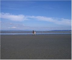 Things to Do in Vancouver - Centennial Beach (Boundary Bay Regional Park) - (website with family activity ideas)