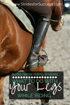 Confused about what exactly you are supposed to be doing with your leg aids while riding? This might just help :) | Audio horse riding lessons