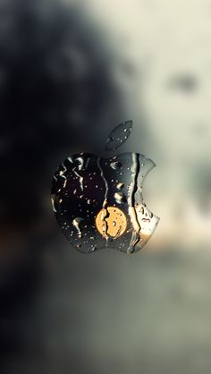 129 Best Apple Images On Pinterest Apples Apple Logo And Apple