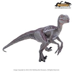 Papo Museum Quality Realistic Velociraptor Dinosaur Toy Replica Model Figure Collectible   Nothing But Dinosaurs