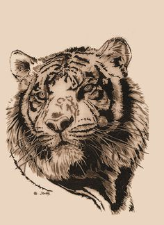 Cute Grey Ink Tiger Head Tattoo Design