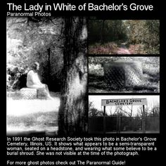 In 1991 the Ghost Research Society took this photo in Bachelor& Grove Cemetery, Illinois, US. It shows what appears to be a semi-transparent woman, . Scary Creepy Stories, Creepy Facts, Ghost Stories, Horror Stories, Creepy Things, Legend Stories, Creepy Stuff, Fun Facts, Funny Stuff