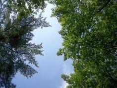 How to Create A Spiritual Awakening Practice this Summer