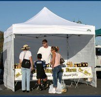 Caravan 10 x 10 Classic Commercial Grade Canopy Value Package + 4 Sidewalls by Caravan Canopy. $379.95