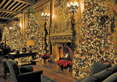 Biltmore Estate (Asheville,NC) decorated for Christmas! A must see! Christmas Home, Christmas Lights, Christmas Holidays, Christmas Decorations, Christmas Trees, Merry Christmas, Christmas Mantles, Classy Christmas, White Christmas