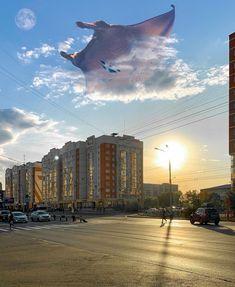 Прогулялся в Рудничном районе Кемерово😎 ⠀ Большую часть времени я один в этом городе, приходится как-то разбавлять скуку выбираясь в новые места. Ну а потом я сижу дома и делаю подобные фотки. Не все хочется выкладывать, т.к. сомневаюсь что это кому-то интересно. Ну а эту фотокарточку решил выложить для активности🤫 ⠀ Shoot on iPhone Xr ⠀ #kemerovo #novokuznetsk #russia #surrealism #city #sunset #autumn #life #sky #adobe #lightroom #photoshop #500px #agameoftones #artofvisuals #aov… Instagram Accounts, Opera House, Building, Travel, Voyage, Buildings, Viajes, Traveling, Trips