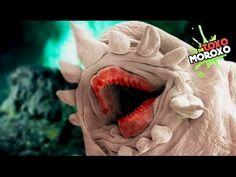 5 Increíbles y Monstruosos Animales Microscópicos que no Creerás que Existen | Listas DeToxoMoroxo - YouTube