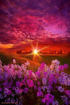 "Horizons — ""The Everlasting"" Wisconsin Horizons By Phil Koch...."