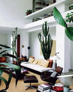 Where plants set the tone... The feel-good home of Maurizio Zucchi, from Ideat magazine (June 2011), via Iiiinspired.