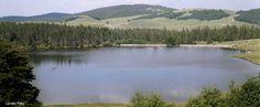 Le Lac des Pises sur l'Aigoual : idéal pour une journée pique-nique en famille ou entre amis