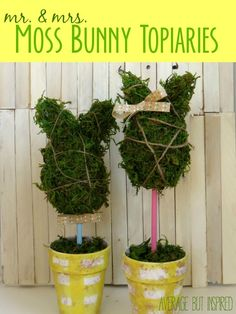 These moss bunny topiaries are SO cute for Easter and spring!  Average But Inspired shares a tutorial on how to make your own.
