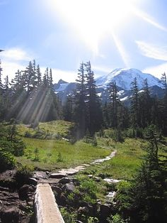 Been here @ Spray Park on Mt. Rainier's Wonderland Trail - On my bucket list... To complete the entire Wonderland Trail!