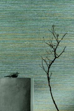 The finest straw requires no artifice to reveal on walls its extreme delicacy. Faux Painting Walls, Textured Wallpaper, Deco, Panama, Lounge Ideas, Drawings, Ph, Flora, Colour