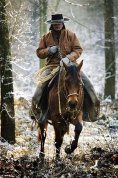 The Wild Wild West, horse in the woods.