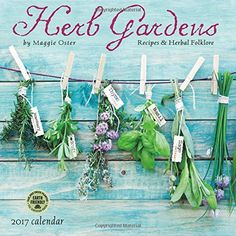 Do you want to plant an herb garden but are not sure you can do it? Starting an herb garden is one of the easiest things you can do.Growing herbs i Herbal Remedies, Home Remedies, Holistic Remedies, Hanging Herbs, Hanging Planters, Ayurvedic Herbs, Ayurveda, Healthy Herbs, Herbs Indoors