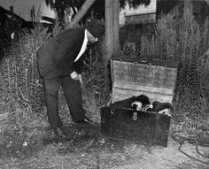 Shocking photos from famed crime photographer Weegee