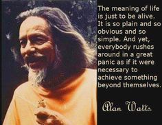 Alan Watts he's probably so right.  But it's fun.  It's fun to dream and visualize, to create and manifest those dreams, solve problems and persevere, see what you can achieve.  And then watch how those creations change others lives for the better, how far you can really take it.  It's all so meaningful and so meaningless.  Love is everything and in everything.  The vibration of love you have has to go somewhere, it has to manifest.  It sings.  It's just fun to watch.