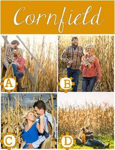 Fun location ideas for fall family photos