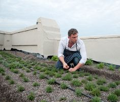Brooklyn Grange is a commercial organic farming business that grows vegetables on rooftops throughout New York City