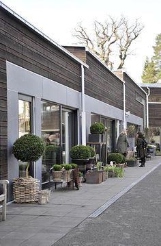 Zeta Tradgard: Stockholm's Most Beautiful Garden Center Gardenista