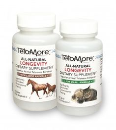 TeloMore Astragaloside IV is a concentrated natural nutraceutical that supports the activity of enzyme telomerase. TeloMore extends the longevity of cells and therefore of animals themselves. TeloMore is available in capsules of 5 mg. for dogs, cats, and other small animals, and 50 mg. for horses and other large animals.  www.viachemllc.com