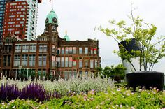 Spring in Rotterdam! Hotel New York. Photo: Lisa van Harmelen