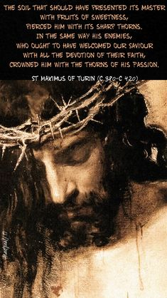 One Minute Reflection – 13 March – 'We ourselves are this house …' – AnaStpaul Passion Of Christ Images, Images Du Christ, Pictures Of Jesus Christ, Religious Pictures, Catholic Prayers, Catholic Art, Catholic Theology, Jesus Art, God Jesus