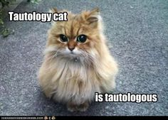 Tautology cat
