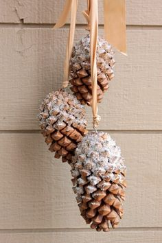 http://www.myclevernest.com/2012/12/3-pine-cone-crafts.html