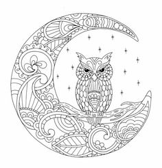Owl In The Moon Stitchery