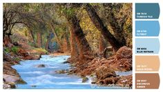 Paint colors from Chip It! by Sherwin-Williams | John Morey Photography | Havasu Creek
