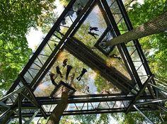 Up in the Air, Morris Arboretum, Philadelphia, PA, Metcalfe Architecture & Design