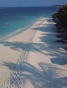 Beautiful Places To Travel, Beautiful Beaches, Beach Fun, Hawaii Beach, Oahu Hawaii, Maldives Travel, Beach Wallpaper, Tropical Beaches, Dream Vacations